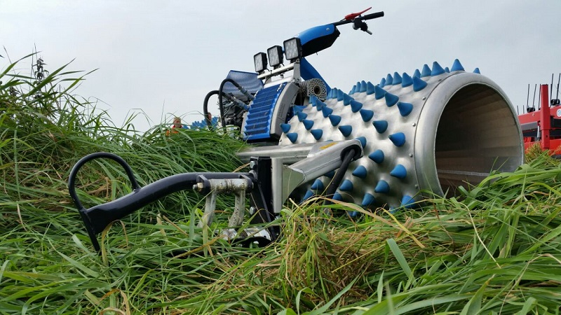 Brielmaier motor mowers at the symposium for marsh areas RRR in Greifswald
