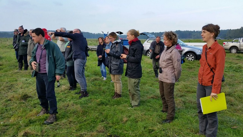 Visitors to the demonstration of the Brielmaier motor mower's RRR 2017 in Greifswald, Germany, seeing the machine mowing the marshes without damaging the soil.